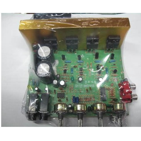 100W Stereo Amplifier Board With Microphone Input